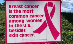 Photo of Breast Cancer Fact Poster: Breast Cancer is the most common cancer among women in the U.S. besides skin cancer.